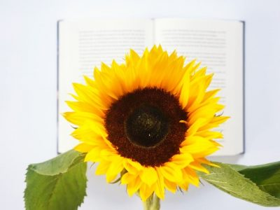 5 Engelstalige boeken op mijn wishlist | Voorjaar 2021