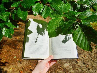 Hoe mijn liefde voor boeken is veranderd
